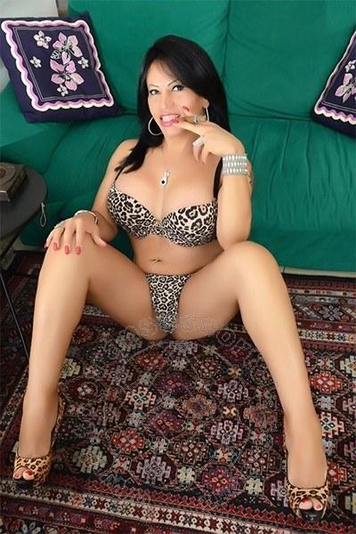 Angeline  TORINO 3475784247