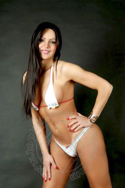 Sandra Ferrari  REGGIO EMILIA 3282051331