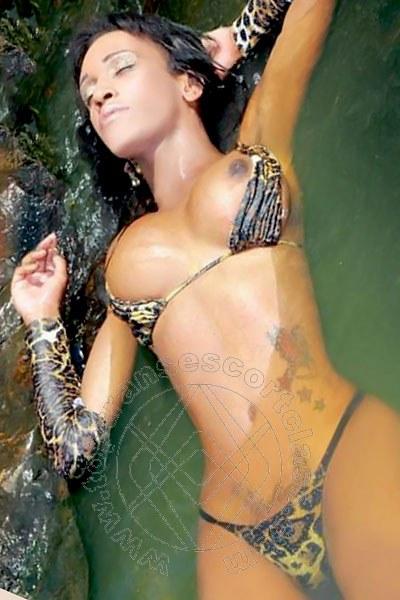 Juliana New  PIACENZA 3456103173